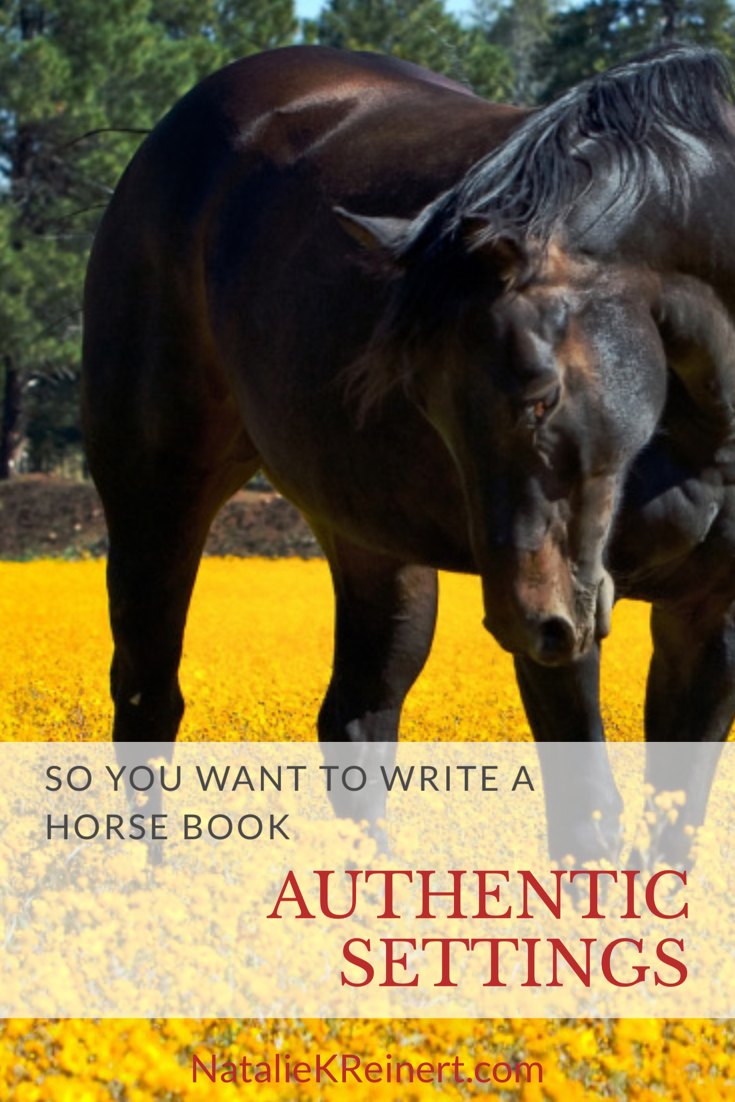 What horse topic should i write about?