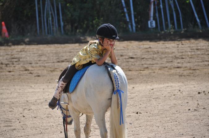 horse-1808727_1920